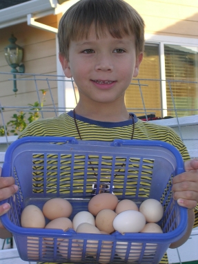 christophers-eggs.jpg